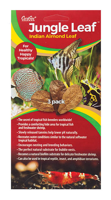 Jungle Leaf 3pk