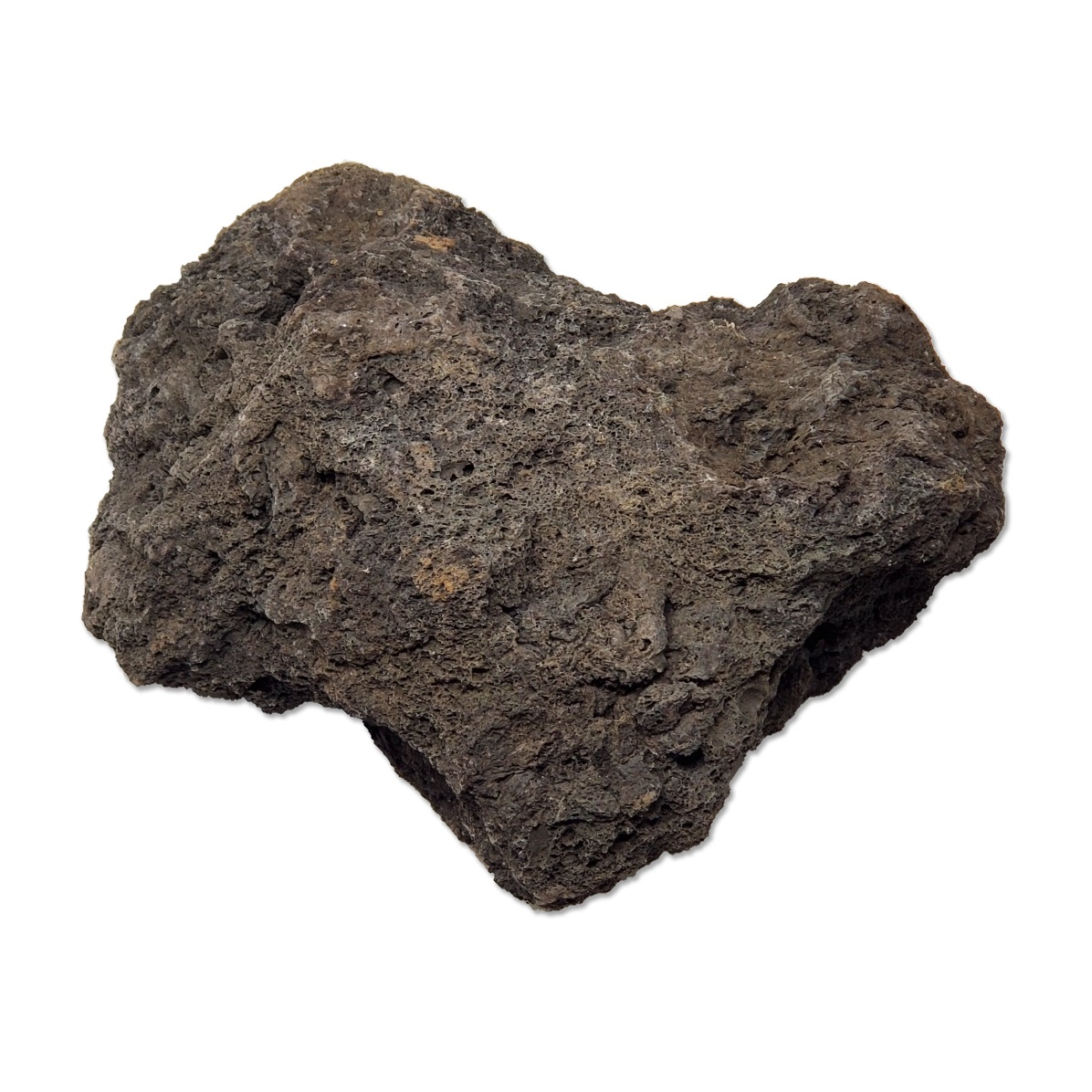 Black Lava Rock 44lbs